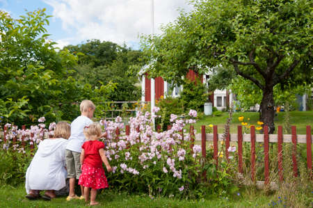 A young mother kneels on the grass with her two young children picking flowers in a beautiful lush rural garden with a red swedish wooden house in the distance Stock Photo