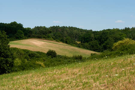 Rural Landscape in the Uckermark district in the north east of Germany