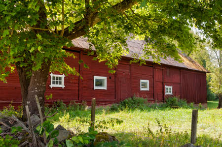 Barn of a farm in the swedish countryside in summer photo