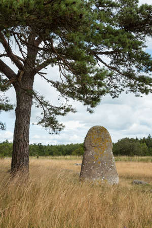 The Galrum picture stone on the Iceland Gotand, Sweden
