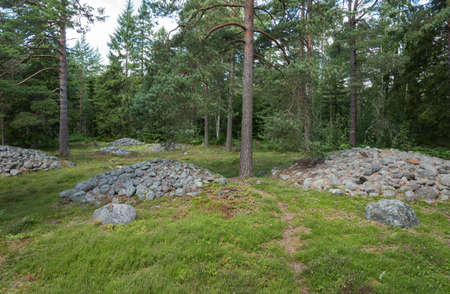 mounts: Cairns on the burial site of Trullhalsar on the island Gotland, Sweden. On this special burial site are ca 350 burial mounts,  a stone ship , stone circles and burial mounts, datet from 550 to 800 AD.