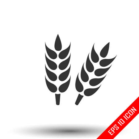 Ears of wheat. Growing ears icon. Simple flat logo of wheat ears on white background. Vector illustration.
