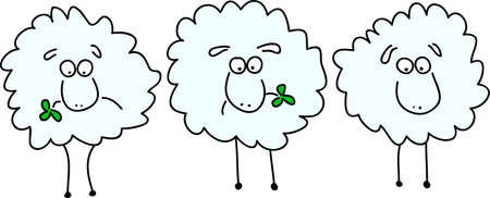 three animals: three animated sheep chewing on clover leaf
