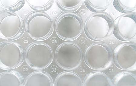 Laboratory test plate photo