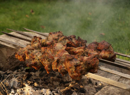 Barbecue of grilled meat on skewer over hot coal photo