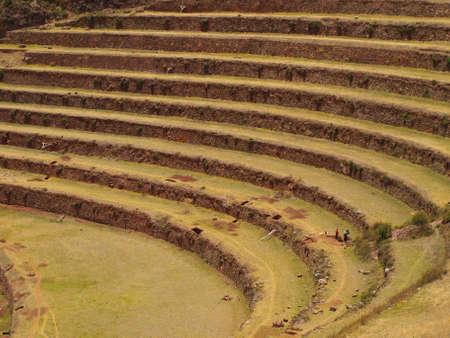 cusco region: Terrazas de la ciudad inca de Pisac en el Valle Sagrado de Cusco, Per� Foto de archivo
