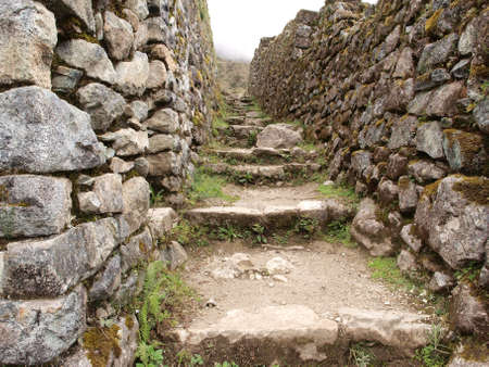 inca: Inca trail between walls