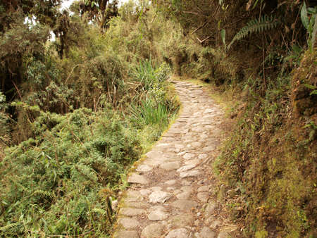 inca: Winding Inca trail Stock Photo