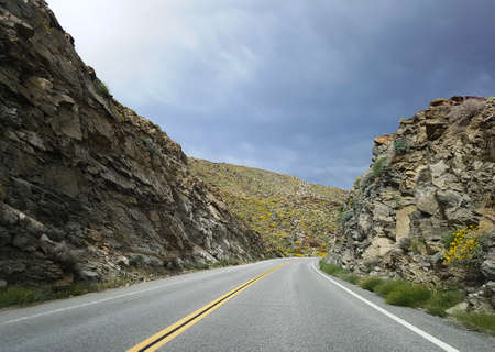joshua: Empty road in California desert highland