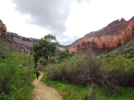 Tourist in Grand Canyon hiking trail Banco de Imagens