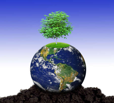 earth with a tree
