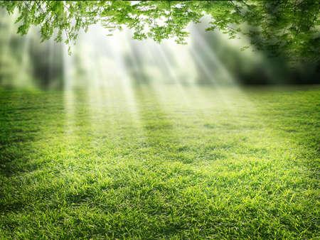 supernatural: light