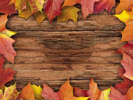 autumnal: autumnal leaves