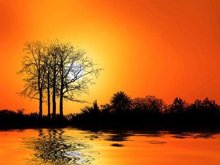 trees Stock Photo - 6390360