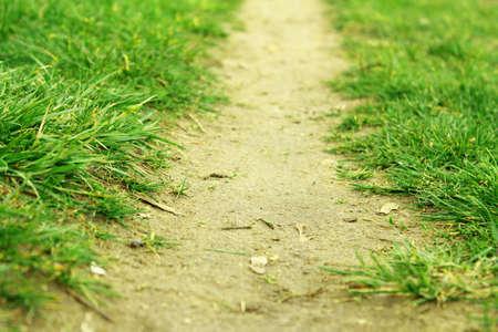 Path  photo