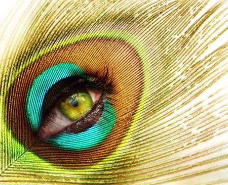 pavo real: mujer mirando a trav�s de plumas de pavo real  Foto de archivo