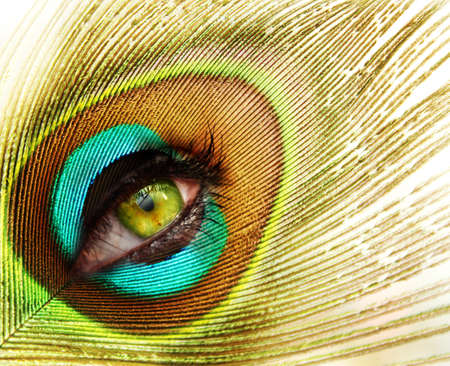 peacock eye: woman looking through peacock feather Stock Photo