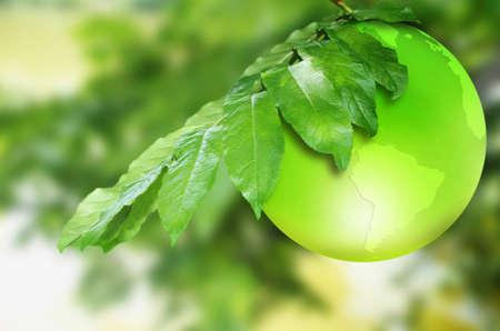 recursos renovables: tierra verde