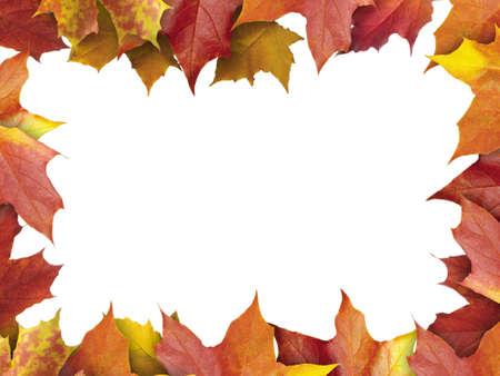 autumn leaves frame Stock Photo - 7853843