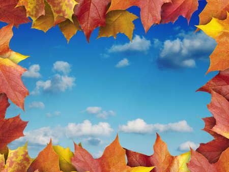 royalty free stock photos: autumn leaves frame