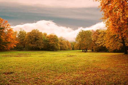 stock image: autumn background Stock Photo