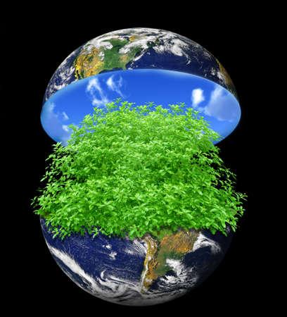 raccolta differenziata: terra verde