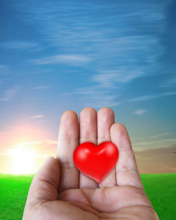 red heart on the hand Stock Photo - 9259019