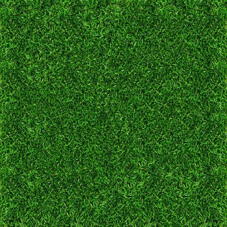 indoor soccer: Fondo de hierba