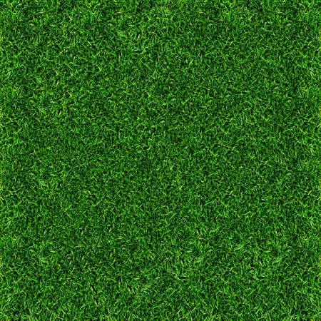 pitch: grass background