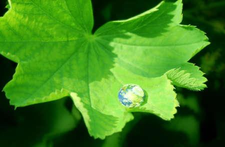 earth in waterdrop photo