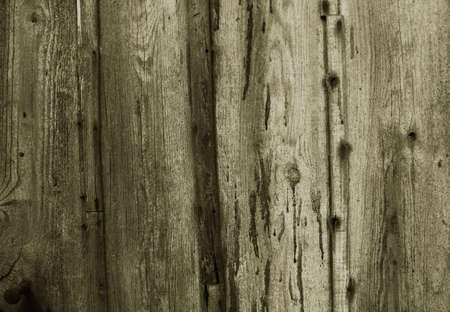 knotting:  High Resolution Wood Texture