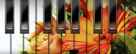 classic contrast: flowers reflection on a piano keyboard