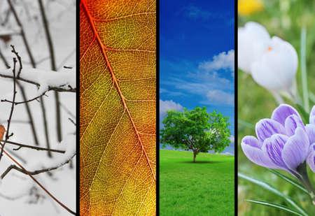 almanak: Vier seizoenen