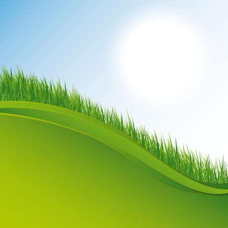 greengrass: grass background