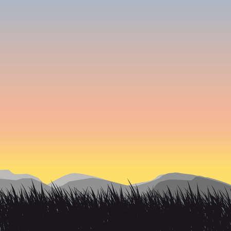 ochtend dauw: gras silhouet achtergrond