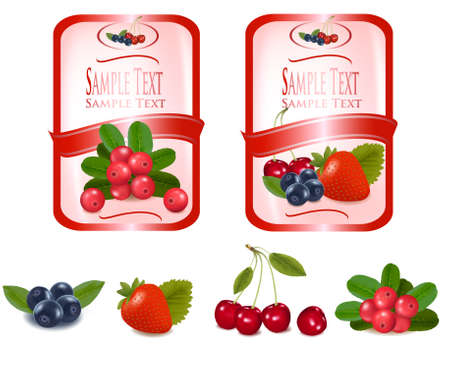 strawberry jam: Two red labels with berries. illustration.  Illustration