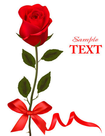 Valentine`s day card. Beauty red rose with bow and ribbons.  Vector