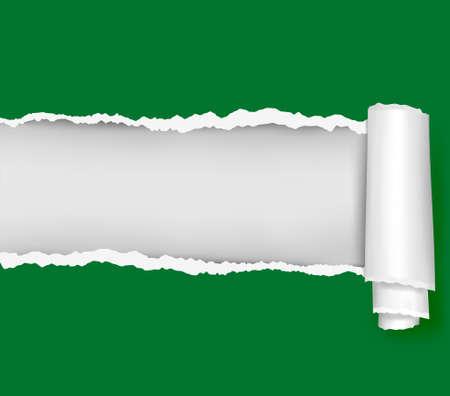 worn paper: Arrancaron el fondo del libro verde. ilustraci�n.  Vectores