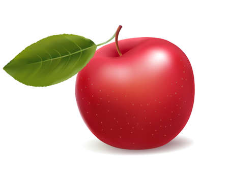 rich in vitamins: red whole apple with green leaf . illustration.
