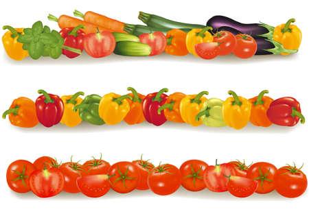 Three vegetable design borders. Photo-realistic.