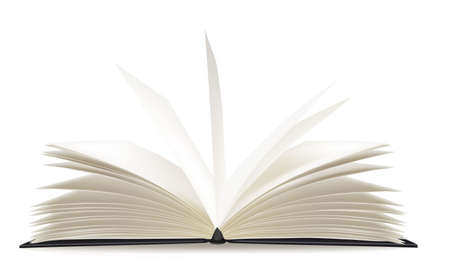 open spaces: White opened book with blank pages.