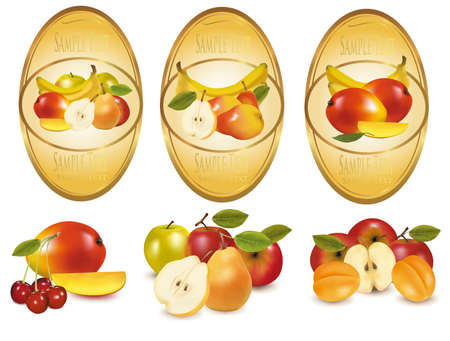 Three labels with different sorts of fruit.  Vector