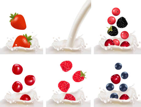 Set with red raspberry, strawberry and cherry fruits falling into the milk splash. illustration  Vector