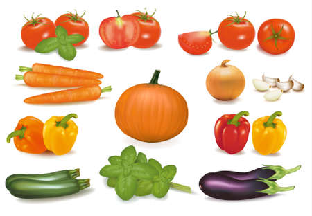 roasting: The big colorful collection of vegetables. Vector.