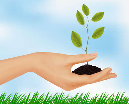 compost: Person holding a young plant. Vector illustration.