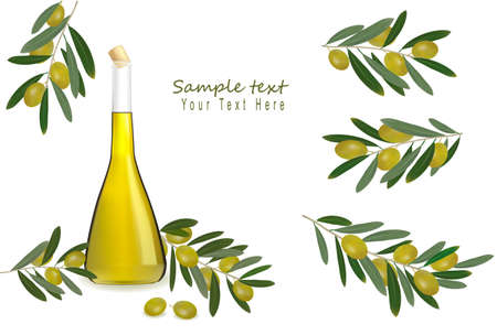 omega: Bottle of olive oil with olives and spices. Vector.