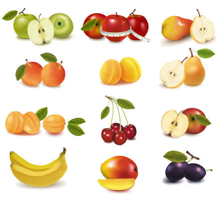 green apple slice: Photo-realistic vector illustration. Big group of different fruit.