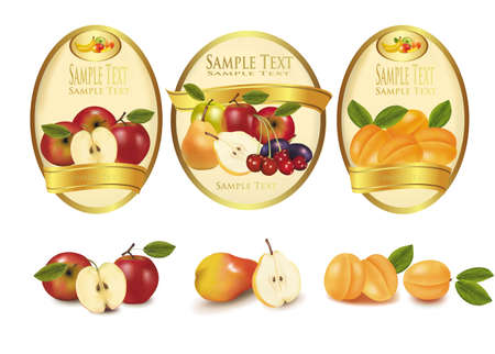 canned drink: Three labels with different sorts of fruit. Vector.
