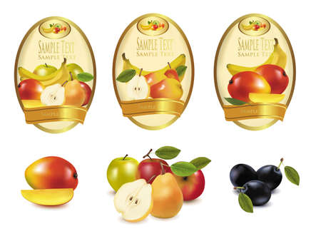 canned food: Three labels with different sorts of fruit. Vector.