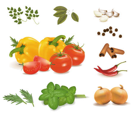 ecoration: Spice collection isolated on white background